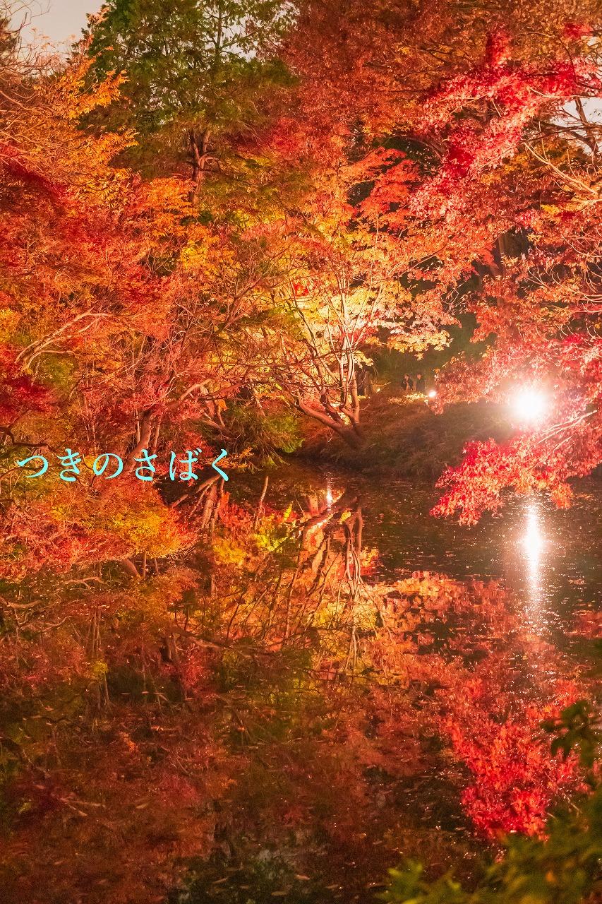 DSC00340fukei3479_1.jpg