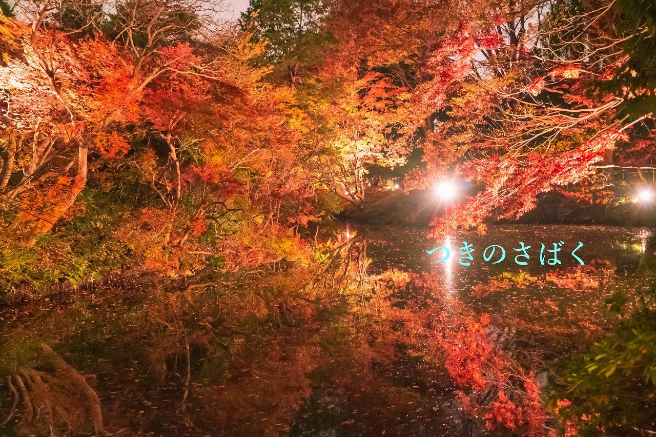 DSC00358fukei3408_1.jpg