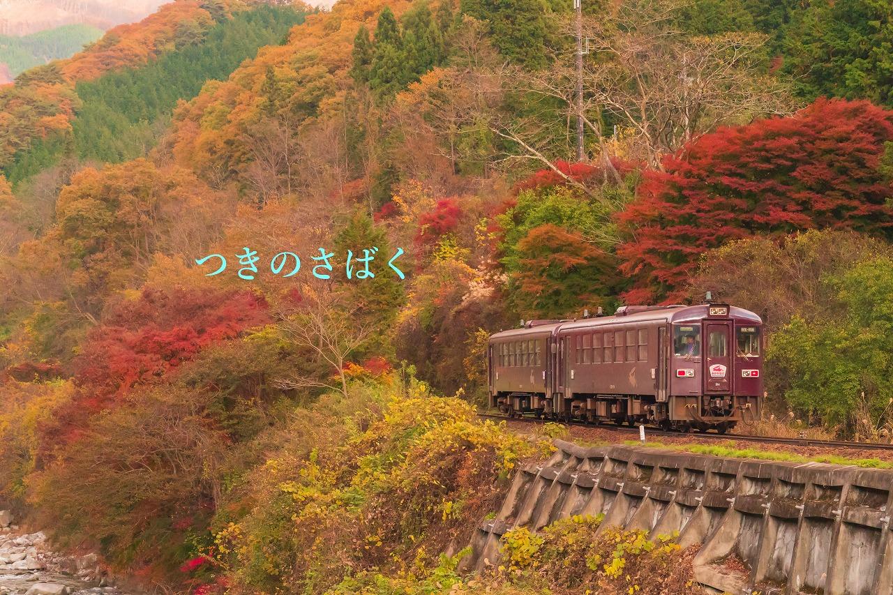 DSC04088adobefukei7141_1.jpg