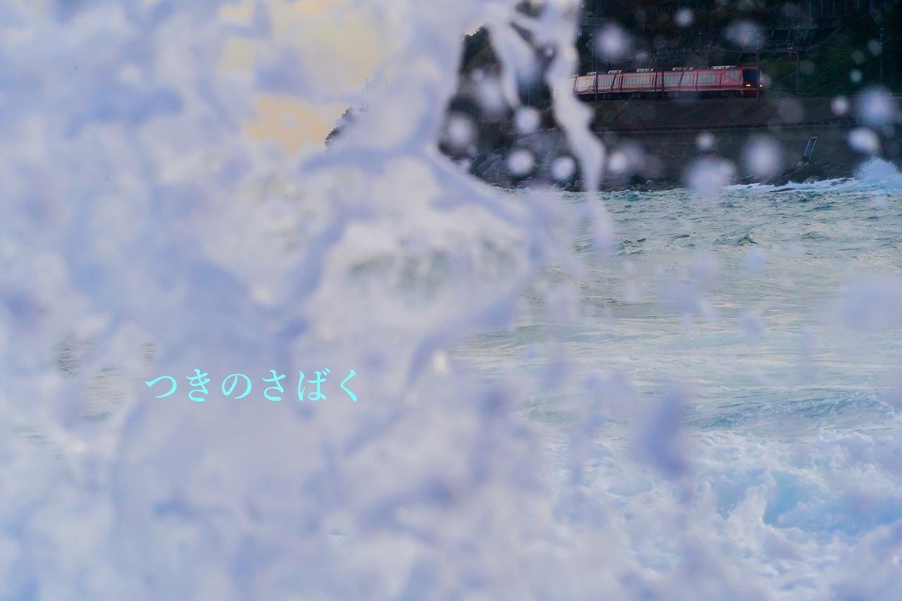DSC08632akarume_1.jpg