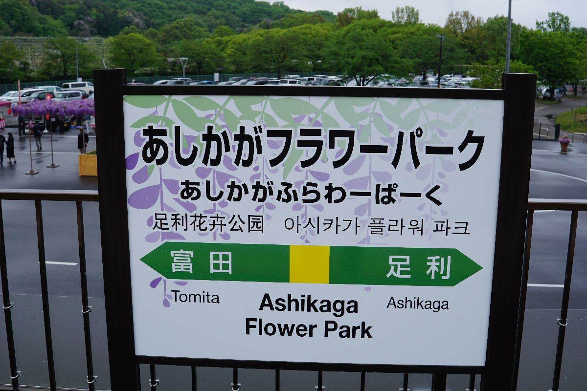 2019_0427ashikagaC0004.jpg