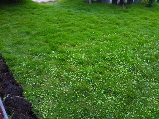 芝 に おじいさん 刈り へ は 山