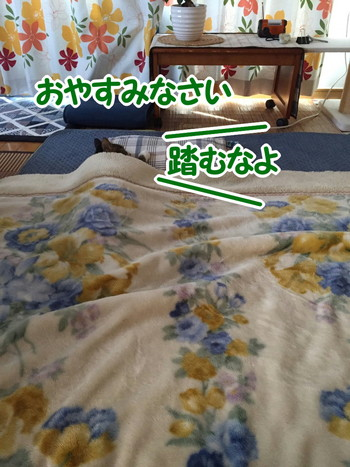 S__56229910.jpg