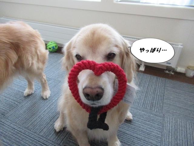 ちょっと早いバレンタインIMG_0951