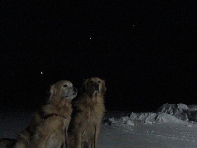 月が木星、金星に接近IMG_1055