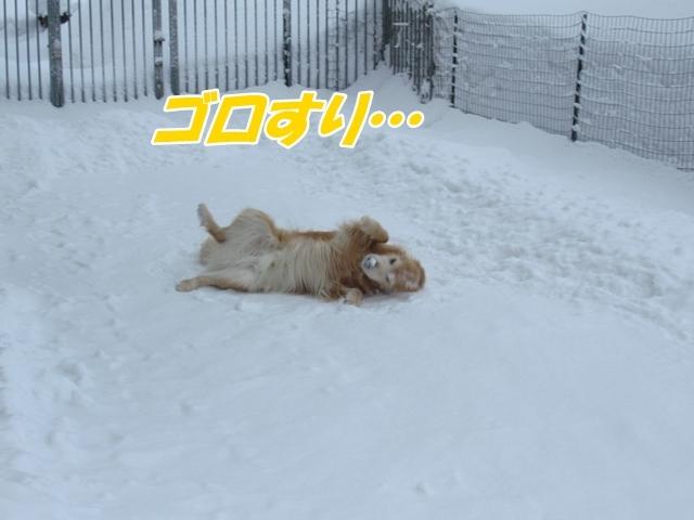 除雪三昧な1日IMG_1832