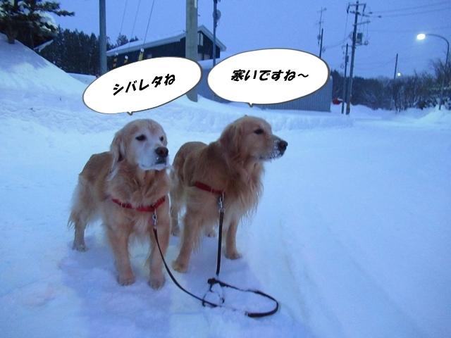 史上最強クラスの寒波到来…らしいIMG_2063