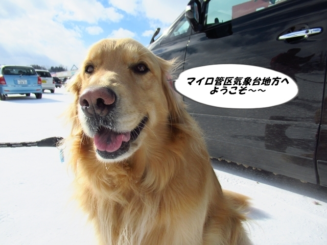 マイロ管区気象台地方へ遠征したデシ!IMG_2297