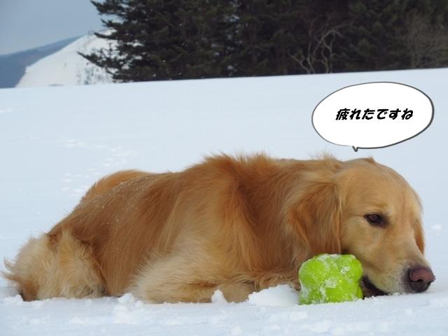 広~~~い雪原で♪IMG_4041