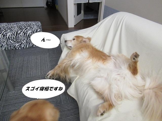 釧路産ひめたらIMG_6329