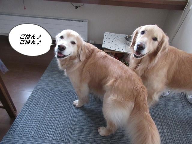 釧路産ひめたらIMG_6368