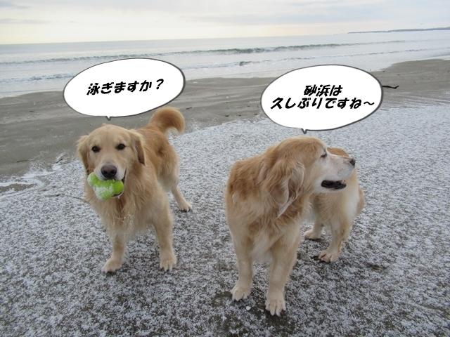 久しぶりな砂浜♪IMG_7913