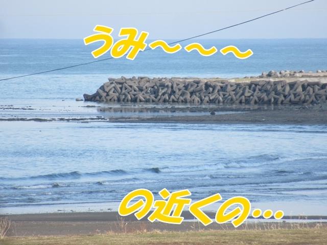 20190422IMG_3404.jpg