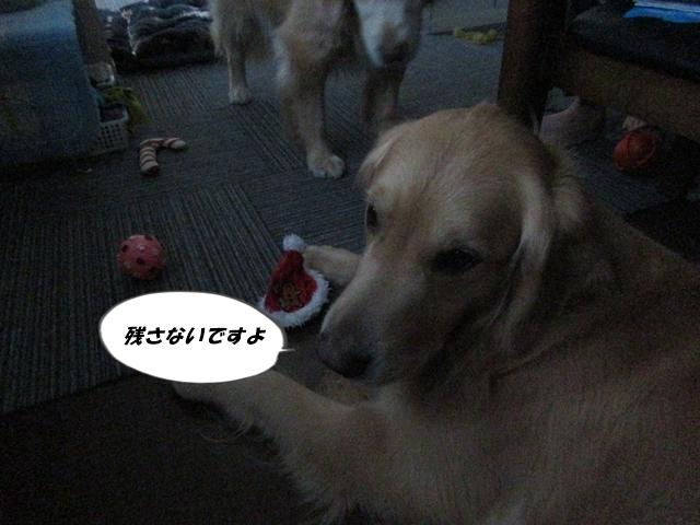 IMG_3580.jpg