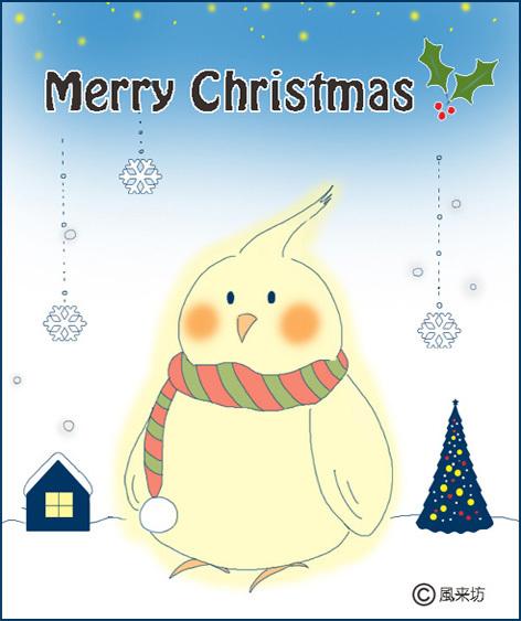 Christmascockatiel.jpg