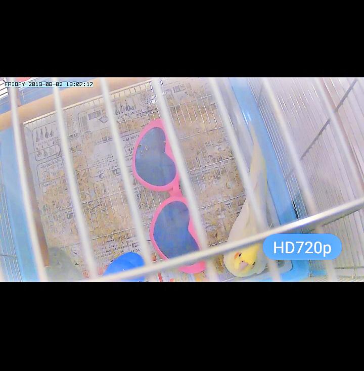 Screenshot_20190802-190719.jpg