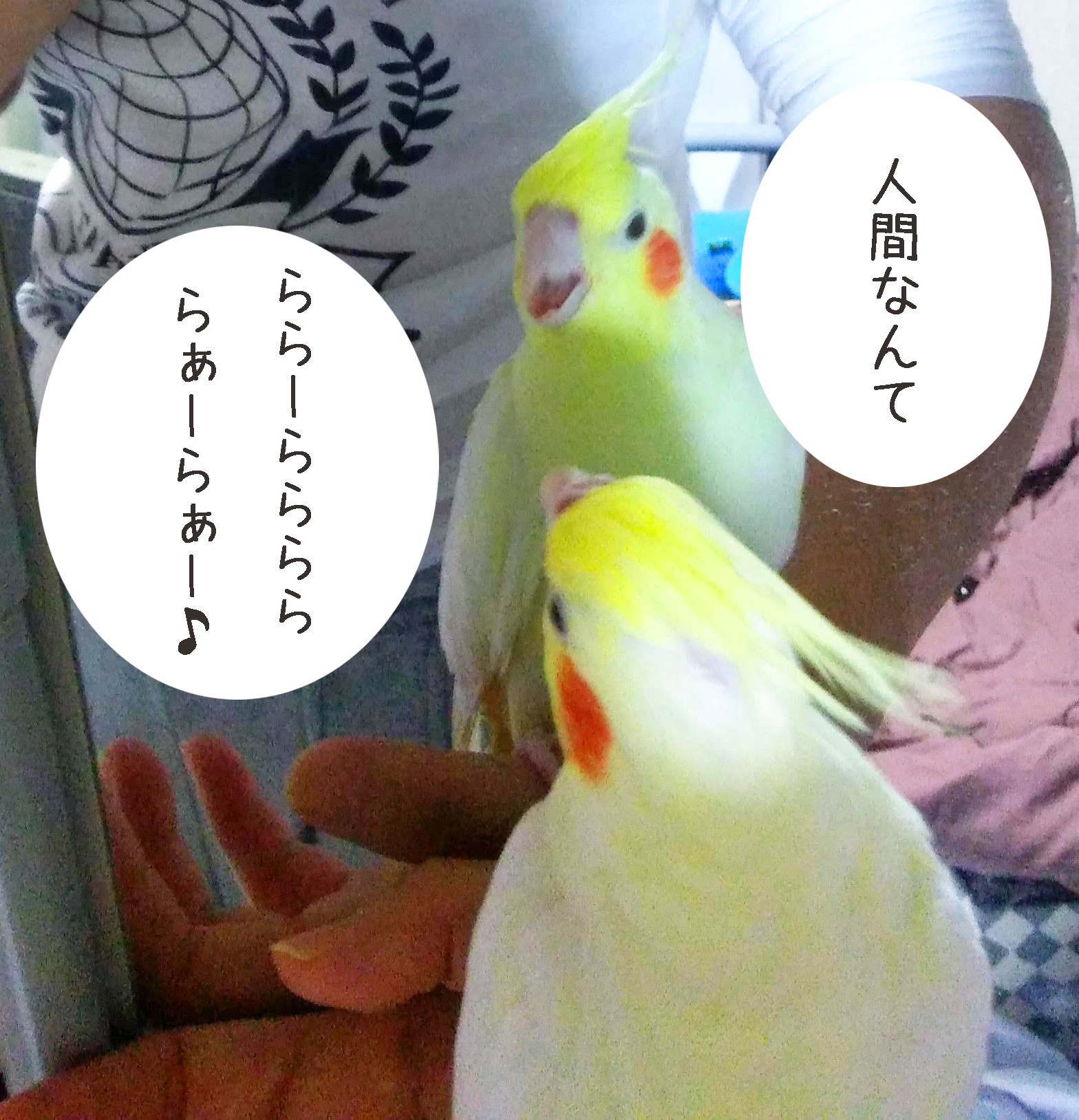 blog20181201-2.jpg