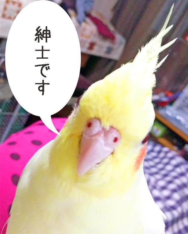 blog20190331.jpg