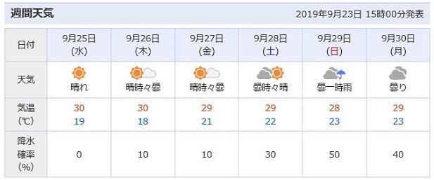 6 週間天気