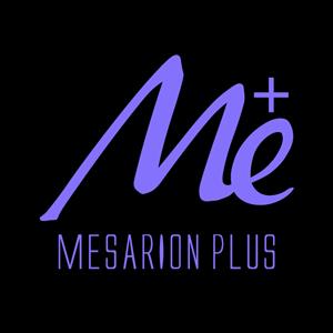 新mesarionロゴBp300