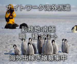 南極出稼ぎ求人情報
