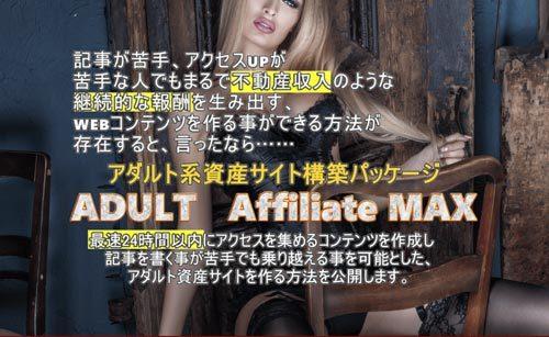 羽田義和 アダルトアフィリエイトMAX