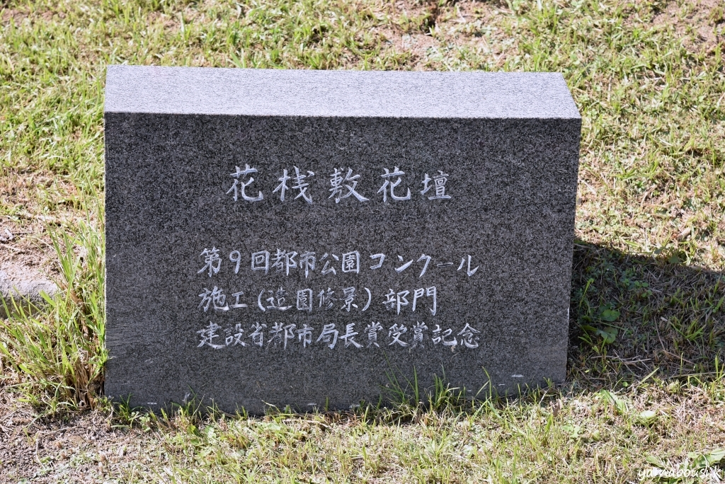 うみなか花桟敷ケイトウ05