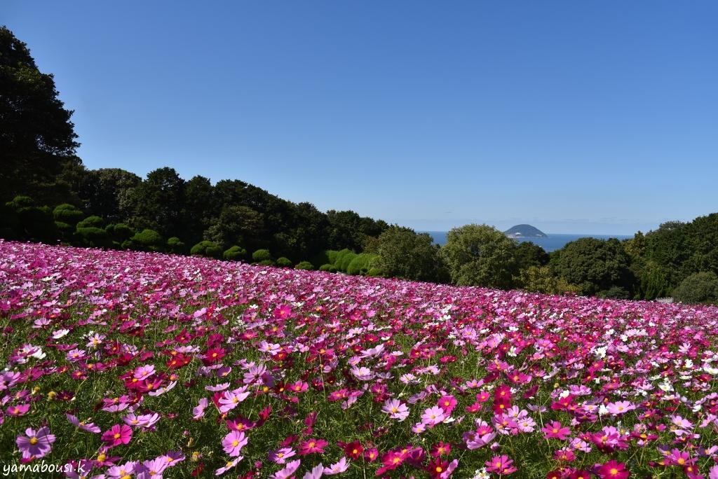 能古島 DSC_5855