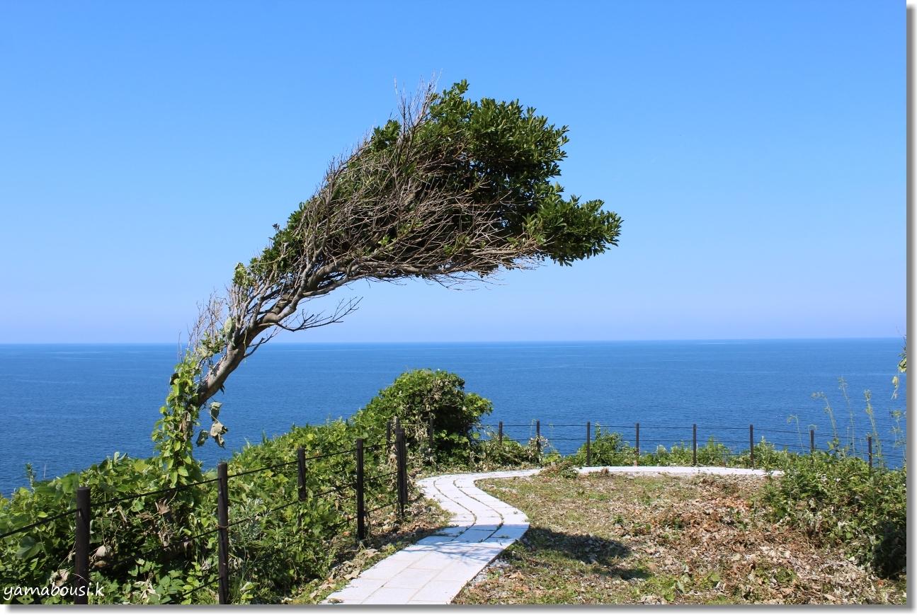 聖域の岬 1