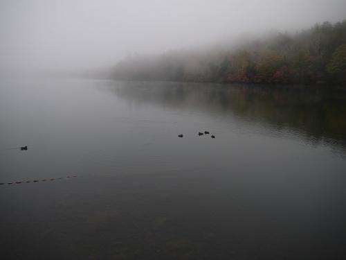 0172-09.jpg