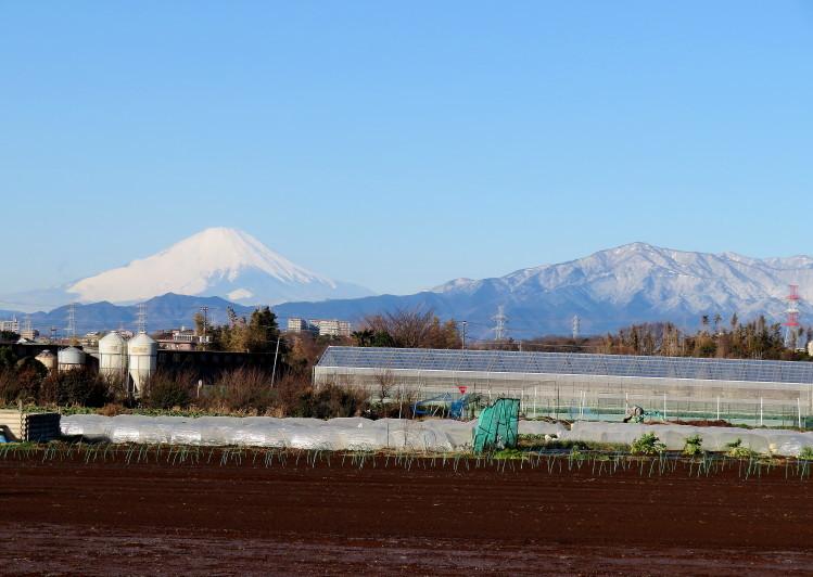 IMG_0081雪の大山