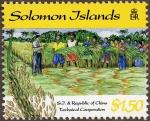 ソロモン諸島・台湾の支援