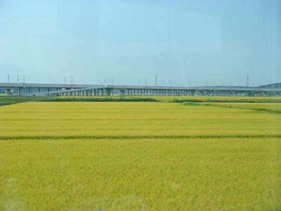 https://blog-001.west.edge.storage-yahoo.jp/res/blog-a4-fe/laxjfk2002/folder/847789/73/51171573/img_5