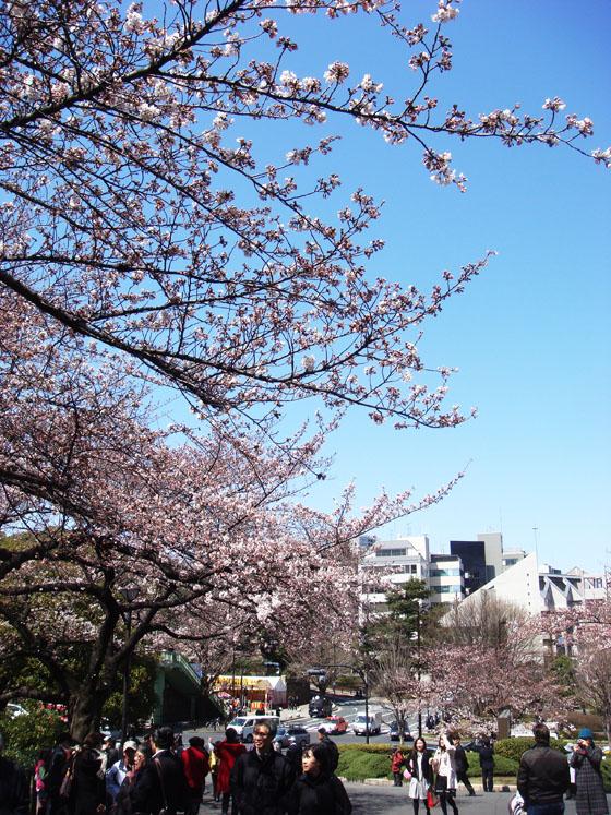 https://blog-001.west.edge.storage-yahoo.jp/res/blog-a4-fe/laxjfk2002/folder/847789/07/51954107/img_3
