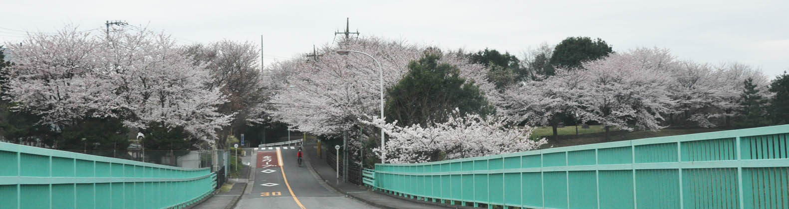 https://blog-001.west.edge.storage-yahoo.jp/res/blog-a4-fe/laxjfk2002/folder/847789/68/51975568/img_12