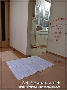 トイレ事情2