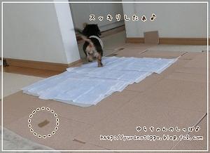 トイレ事情3