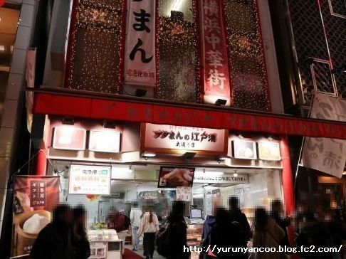 ブログNo.1475心配性な猫&おまけ(横浜中華街)11