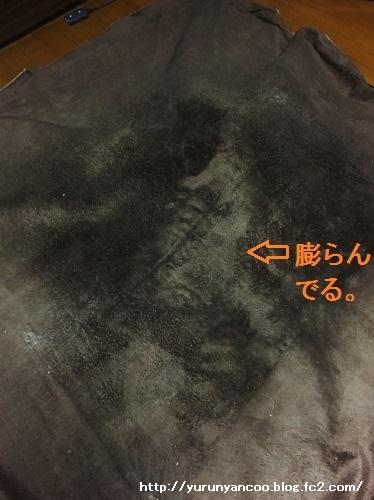 ブログNo.1364(いつの間に?)1