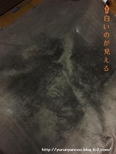 ブログNo.1364(いつの間に?)2
