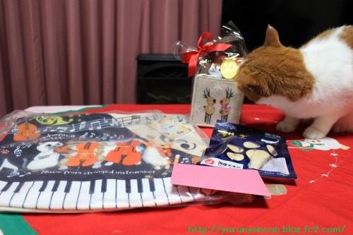 ブログNo.1396(嬉しいクリスマスプレゼント♪)4