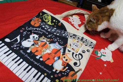 ブログNo.1396(嬉しいクリスマスプレゼント♪)7
