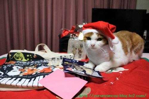 ブログNo.1396(嬉しいクリスマスプレゼント♪)11