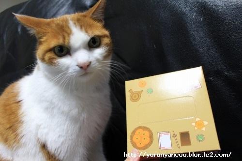 ブログNo.1465(ティッシュに猫の絵)7