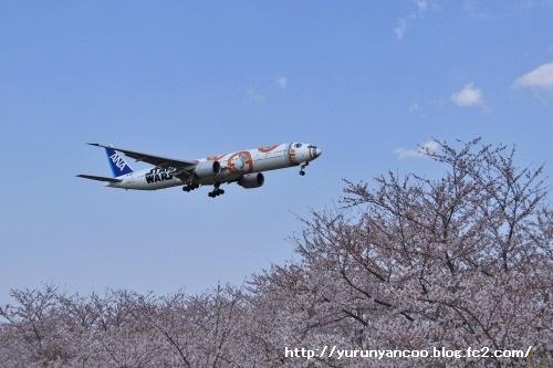 ブログNo.1496ビニール見っけ♪からの~&おまけ(成田さくらの山公園)15