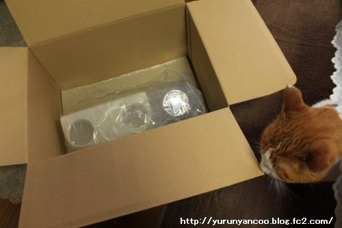 ブログNo.1497(猫用食器、衝動買い!(^_^;))3