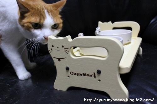 ブログNo.1497(猫用食器、衝動買い!(^_^;))11