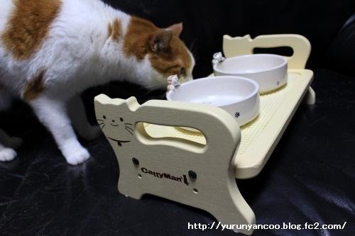 ブログNo.1497(猫用食器、衝動買い!(^_^;))12