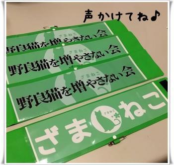 10譛亥ケク縺幃€壻ソ。・托シ狙convert_20181028020154