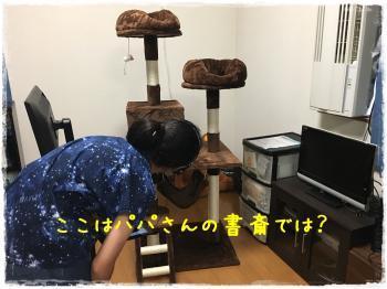 蜊呈・ュ縺。繧・@繧阪・縺・0譛亥ケク縺幃€壻ソ。・托シ廟convert_20181031185651
